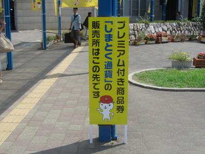 つばきねこ1.JPG
