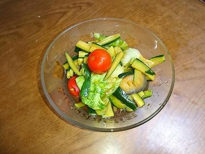 揚げ茄子とキュウリの冷静サラダ.JPG